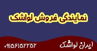 نمایندگی فروش لواشک ورقه ای در ایران 4