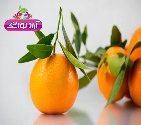 انواع لواشک میوه