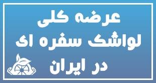 عرضه کلی لواشک سفره ای در ایران