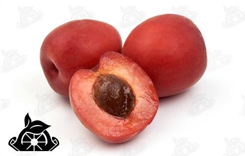 خرید رب میوه زردآلو