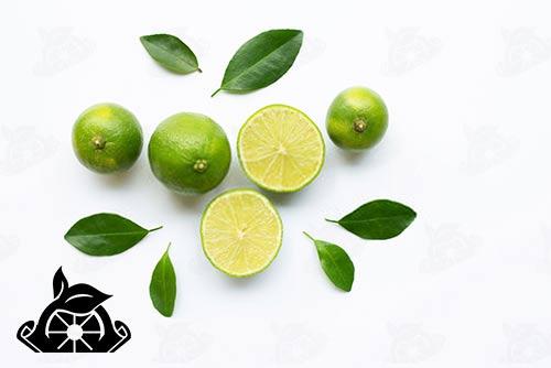 خرید رب لیمو عمانی