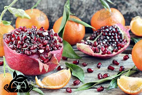 خرید و فروش ترشک بیست میوه