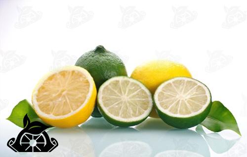 عرضه رب لیمو عمانی