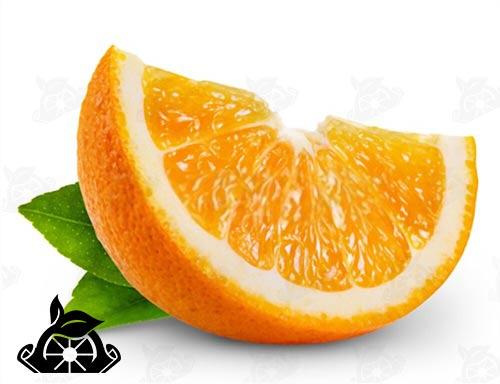 فروش رب نارنج