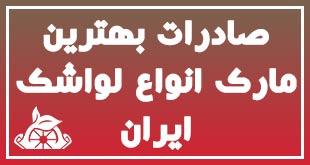 صادرات بهترین مارک انواع لواشک ایران