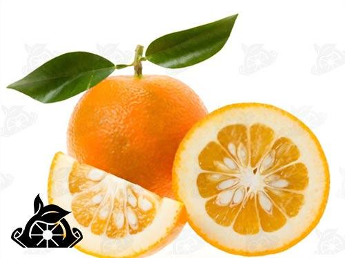 فروش عمده رب نارنج در ایران