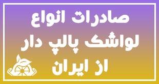 صادرات انواع لواشک پالپ دار از ایران 1