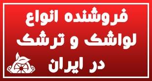 فروشنده انواع لواشک و ترشک در ایران 1