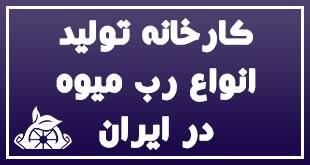 کارخانه تولید انواع رب میوه در ایران 1